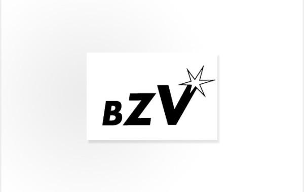 BZV GmbH